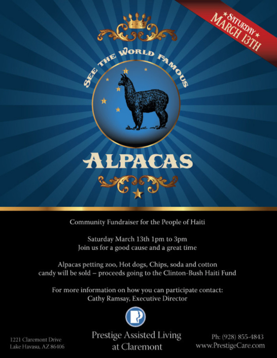 Alpaca Branded Event Flyer